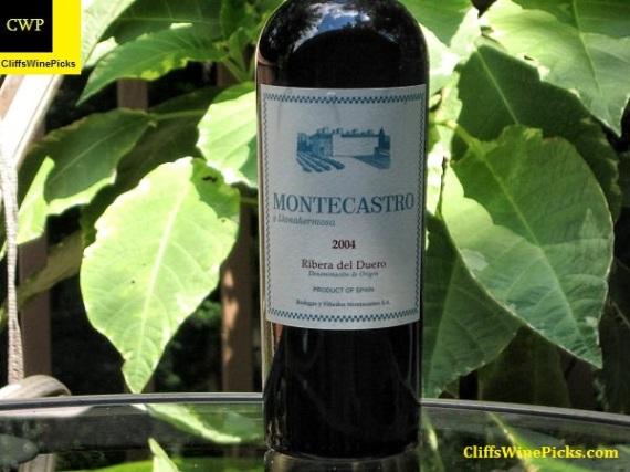 2004 Bodegas y Vinedos Montecastro y Llanahermosa Ribera del Duero