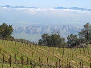 Spanbauer view