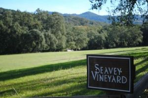 Seavey Vineyard