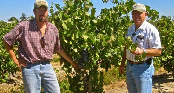 mohr-frye-vineyard